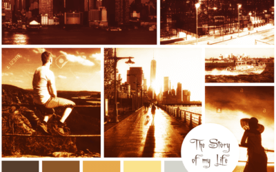 Neues Projekt: Buchcover-Gestaltung